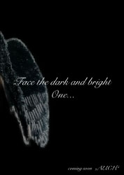 "Face the dark and the bright One.... ""Auch"""